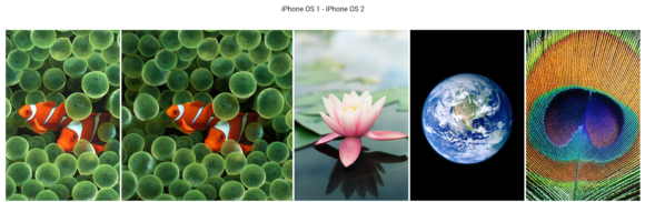 iPhoneOS wallpaper