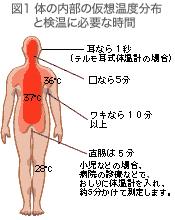 terumo 1