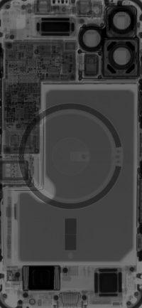 iPhone 12 Pro Max X-ray Wallpaper