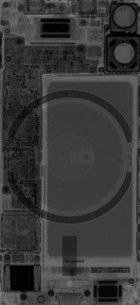 iPhone 12 mini X-ray Wallpaper